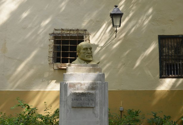 picture taken in the old part of the city of Havana Cuba - a bust of Santiago Ramon y Cajal on a pedestal in a park