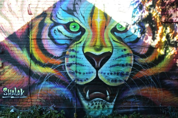 A shalak painting of a large tiger head with mouth open and teeth showing. Multicoloured, painted on a wall in an alley. The sun is shining directly on part of it so its a bit washed out in places.