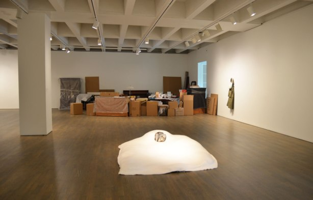 art installation at the Art Gallery of Ontario by Liz Magor - 3 pieces. First, a pile of moving boxes and other items that look like they are in the midst of getting ready for the movers. Second, a large white blanket bed sized that has a hole in the middle of where the pillows should be but instead there is a wolf curled up inside the whole. Third, what looks like a jacket hanging from a hook on the wall