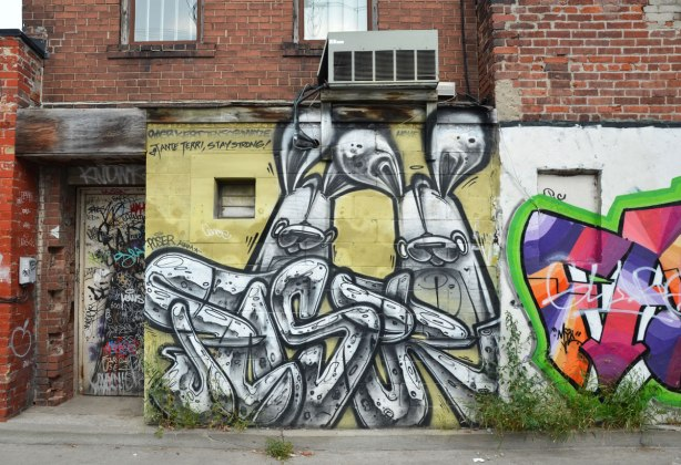 Two large poser bunnies on a wall in an alley
