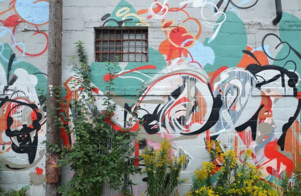 A wall with a small window with a metal grille over it, covered in street art, with weeds and goldenrod growing up in front of it