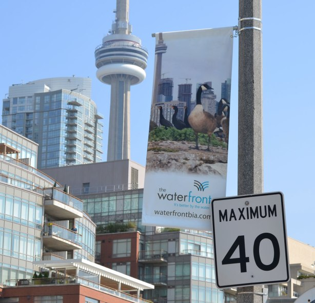 A banner with a picture of a seagull on it. In the background of the banner picture is the CN Tower. In the background of this photo, there is also the CN Tower.