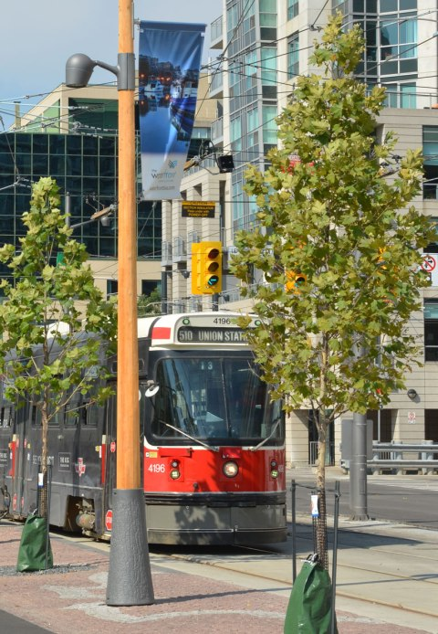 TTC streetcar on Queens Quay