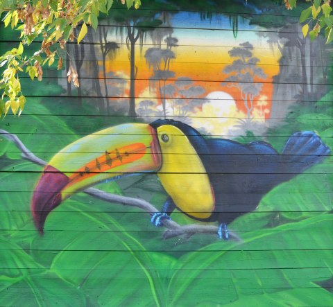 street art painting of a toucan with a colourful beak, sitting on large green leaves with a sunset in the background.