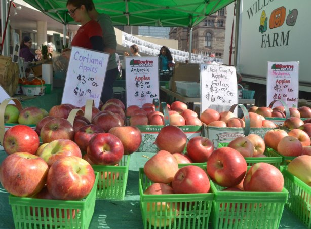 basket of apples for sale at an outdoor market, Macintosh apples, gala apples, cortland apples and ambrosia apples.