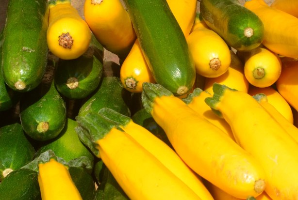 little green zucchinis and little yellow squashes for sale at an outdoor market