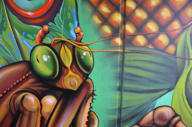 close up of big eyes on an insect, part of a mural
