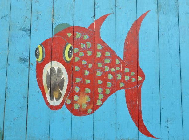 bright red fish with it's mouth open painted on a bright blue wood fence
