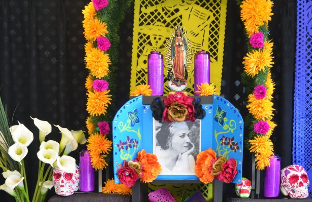 ofrenda, altar, day of the dead celebration, woman's picture along with Virgin Mary candles and other pink cnadles, lots of orange flowers too