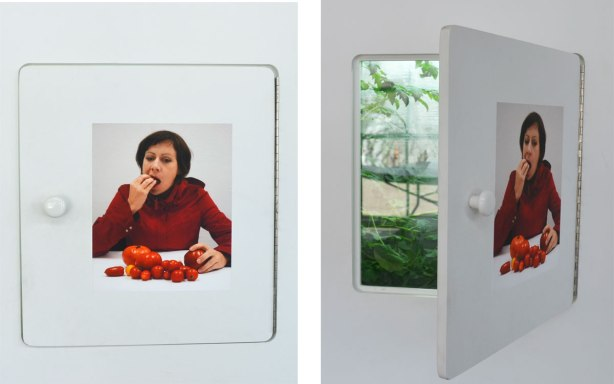 Two pictures of one art installation. On a small door is a picture of a woman eating a tomato and with a pile of tomatos in front of her. Open the door and it reveals a small space with a tomato plant growing there.