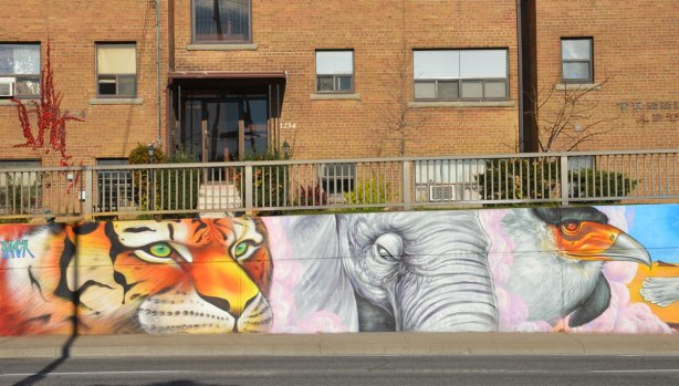 part of a larger mural on the side of an underpass, road and sidewalk in front of the photo, houses behind - a larger than life sized head of a tiger, an elephant, and a bird with a colourful beak