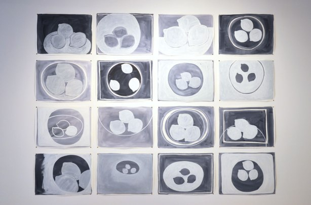 A grid of 16 black and white paintings of three lemons in a bowl , on an art gallery wall