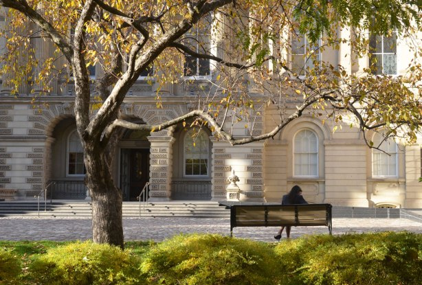 A woman sits on a bench in front of Osgoode Hall, a stone building. Her back is to the camera. A tree with a few yellow leaves frames the picture.