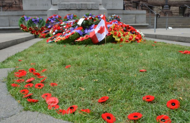 Many Remembrance day poppies lie on the grass in front of the cenotaph in front of old City Hall. In the background is a small Canadian flag as well as a few wreaths that have been laid in front of the cenotaph.