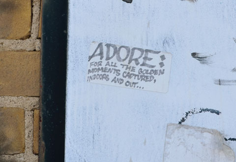 sticker on a white wall. Sticker says ADORE: for all the golden moments captured indoors and out