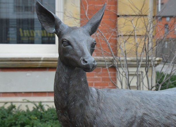 part of an art installation by Eldon Garnet called inversion - the head of a deer in front of a building