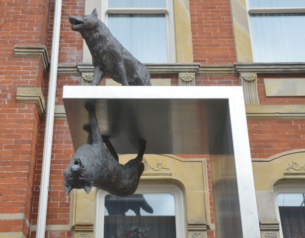 part of an art installation by Eldon Garnet called inversion - a wolf on a metal platform and a second wolf upside down under the same platform