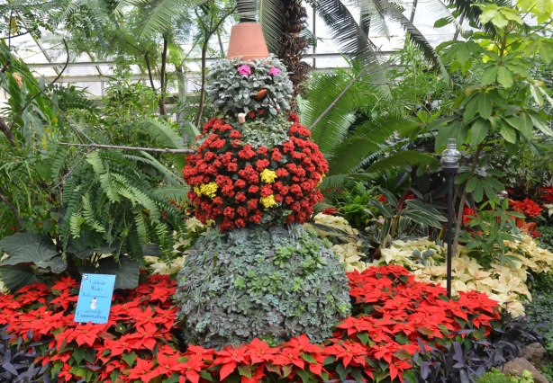 cactus and succulents grown on a snowman shape, with a carrot nose and a corn cob pipe in its mouth, and a clay flowerpot for a hat - a vest of red flowering plants and surrounded by a circle of red poinsettias