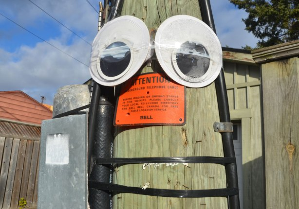 Two big googly eyes attached to a telephone pole