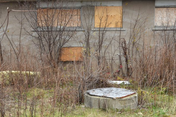 back of abandoned motel, boarded up windows, weeds and shrubs growing in front
