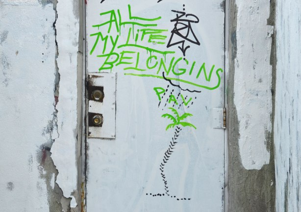 graffiti on a white door in an alley, the words All My life Belongins Pain with a small drawing of a palm tree