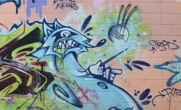 rabid raccoon in blues, street art