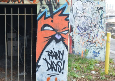 graffiti street art in an alley - an angry bird bird with the words Rainy Days