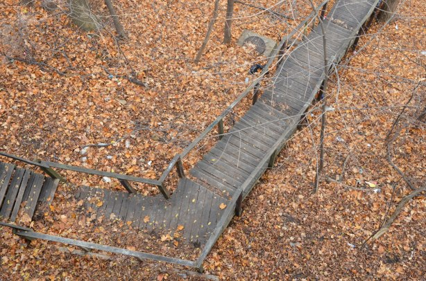 long wooden staircase going downhill in autumn with lots of dead leaves on the ground