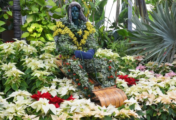 topiary in the shape of a person sitting on a wood toboggan, sitting in a pile of poinsettias