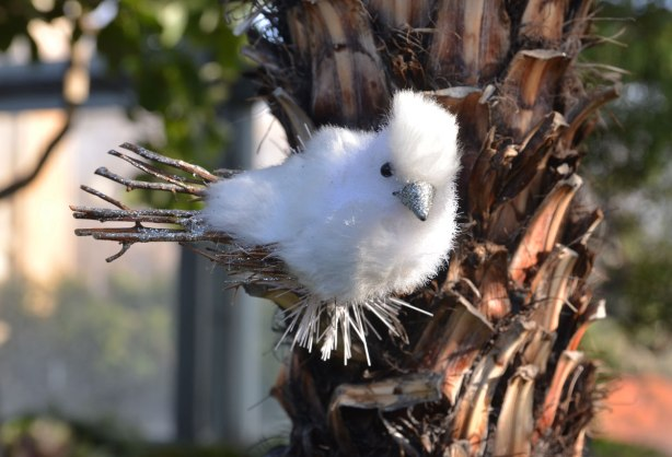 A white bird decoration, not a real bird, with twigs for a tail and for his feet, is perched on the branch of a tree
