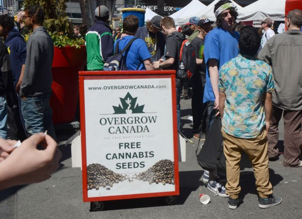 People at Yonge Dundas Square in Toronto celebrating 420 day - people mingling around a sign that is advertising free cannabis seeds