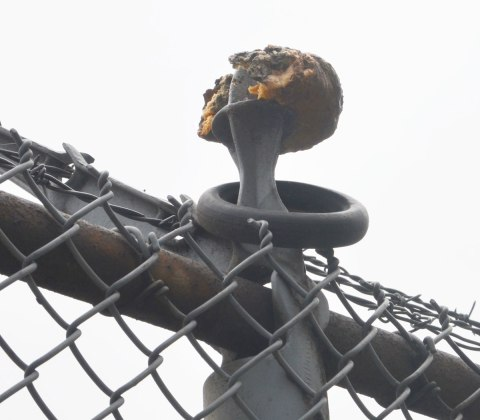 a moldy partially eaten bagel or donut sits on top of a fence pole on a chain link fence