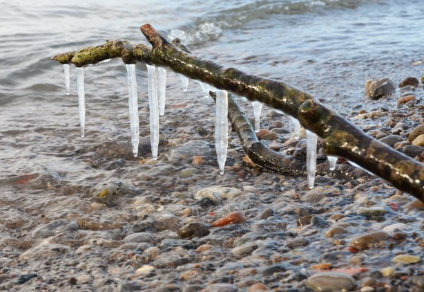 icicles hang from a stick that is embedded in the sand beside a lake. pebbles, water.