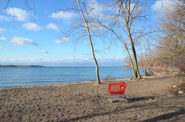 an abandoned red plastic shopping cart with a Value Village label on a beach, long shadows, a few trees, Cherry Beach, Lake Ontario. There are some empty cans in the cart