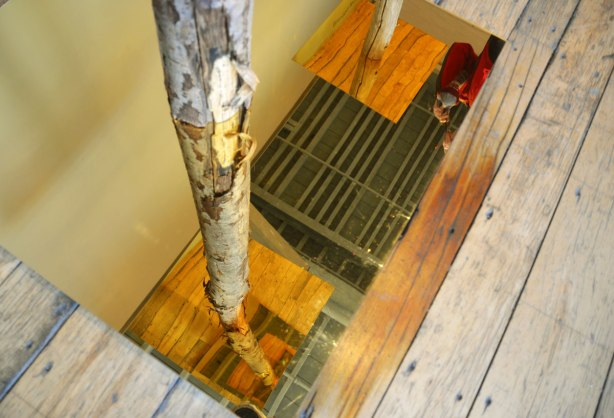 picture taken inside an art gallery - a tree trunk stands in the middle of a gold toned mirror,
