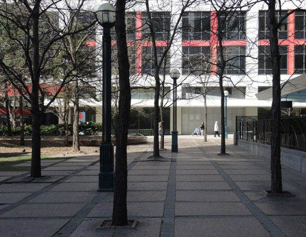 A number of leafless trees and three lamp posts in Simcoe Place, downtown Toronto, with the CBC building in the background