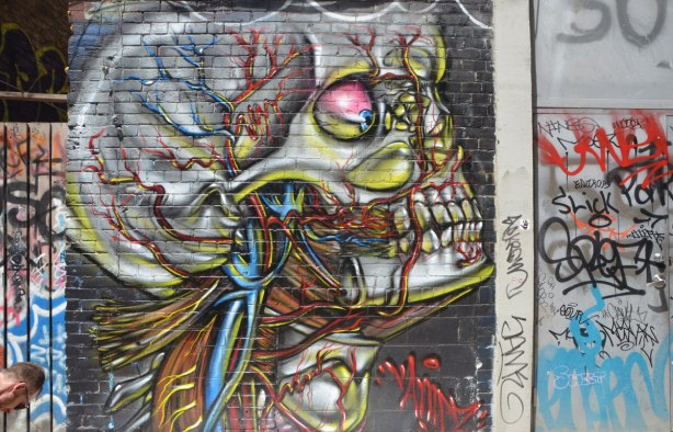 street art painting of a larger than life, realistic depiction of the blood supply to the human head. Skull with eyeball, teeth, some neck muscles as well as arterial and venous blood vessels. In profile.
