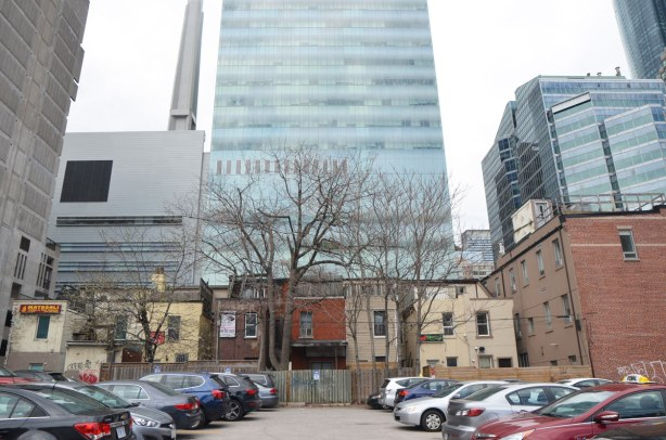 view from a parking lot, a row of the back of older two storey brick buildings with some mature trees, then taller modern glass buildings.