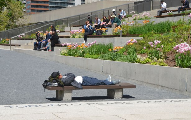 A young man is lying on a bench in the Toronto peace garden, the words of which are written beside him, metal inlay in the stone on the ground.