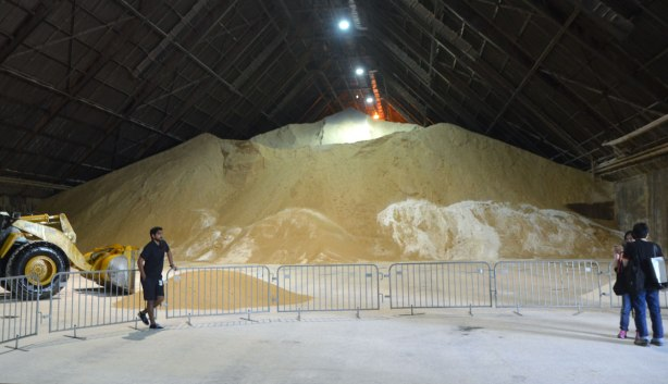 a man is leaning on a temporary metal barricade in front of a very large pile of raw sugar in a large warehouse.
