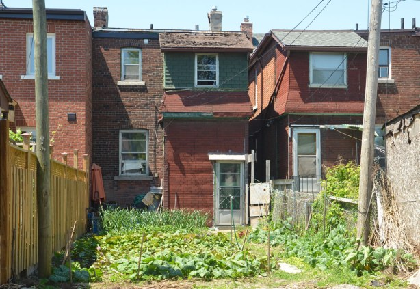 the back of a house and its backyard which has been planted with a vegetable garden.