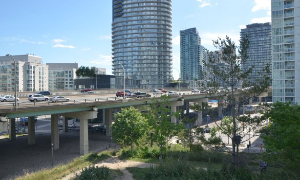 The elevated Gardiner Expressway with traffic is in the middleground, some trees and parkland in the foreground, and condo developments in the background.