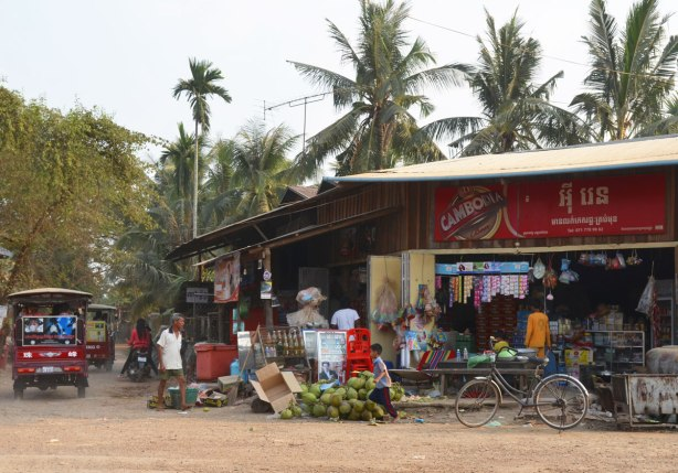 a store on the corner of two dirt roads in Cambodia, palm trees behind, a tuk tuk is driving past