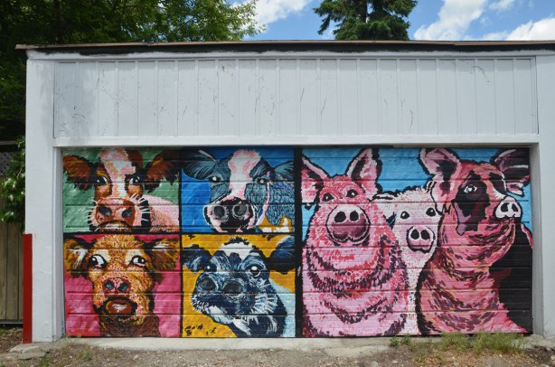 graffiti street art animals painted on garage door in an alleyway - four cow heads and three pink pigs
