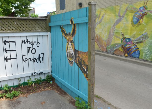 graffiti street art animals painted on garage door in an alleyway - a donky's head on a turquoise fence