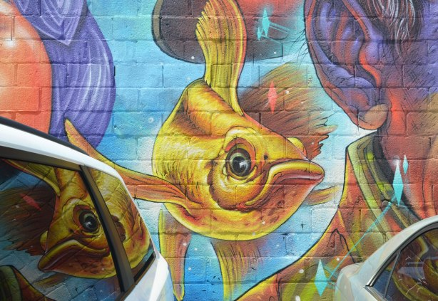 part of a mural, a gold fish swimming, it is also reflected in the windows of the car that is parked beside it.