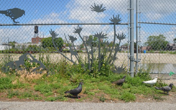 a chainlink fence with some metal cut outs of flowers and pigeons on it, with weeds growing up in front of it, and a few real pigeons on the ground.