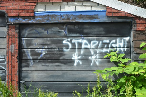 some green weeds growing in front of an old garage in an alley with a black door on which someone has spray painted the word starlight.