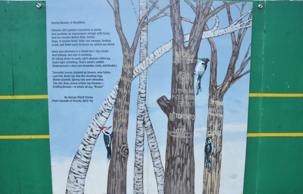 mural painted on TTC construction hoardings, trees and birch trees with no leaves on them, with a couple of woodpeckers