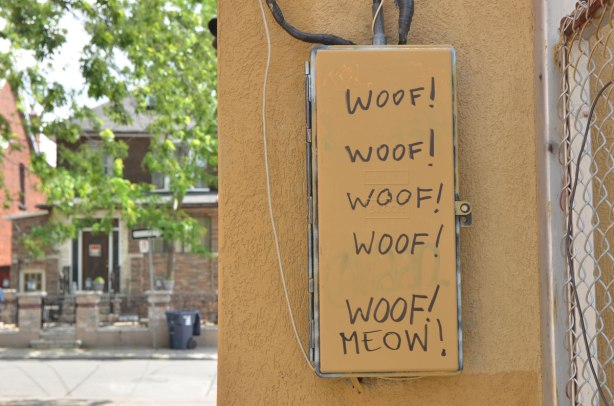 a metal box on a wall, both painted a yellowish brown, on the box someone has written woof woof woof woof woof meow vertically so that meow is under a pile of woofs. The house across the street is in the background.
